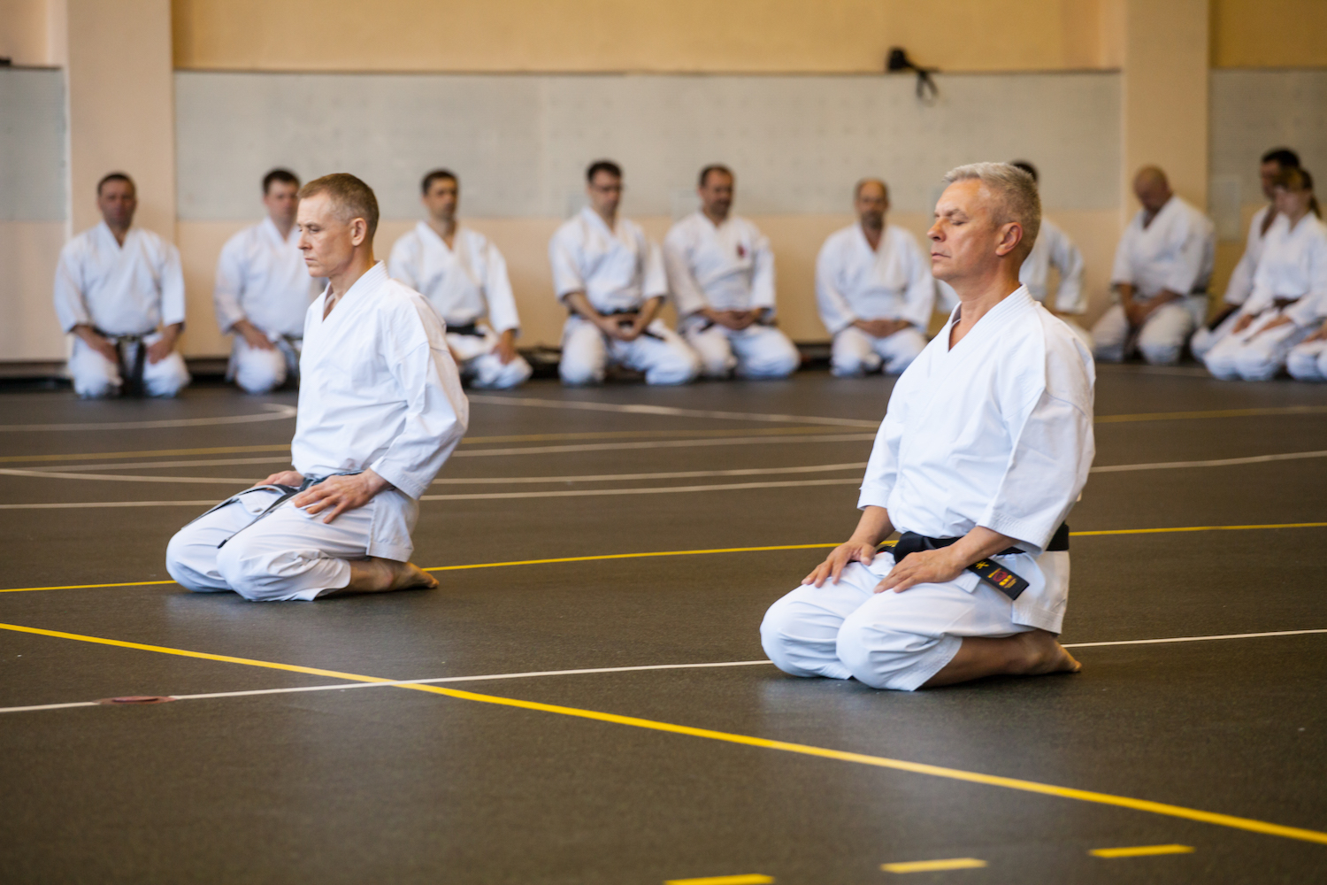 8 International Traditional Karate-do seminar