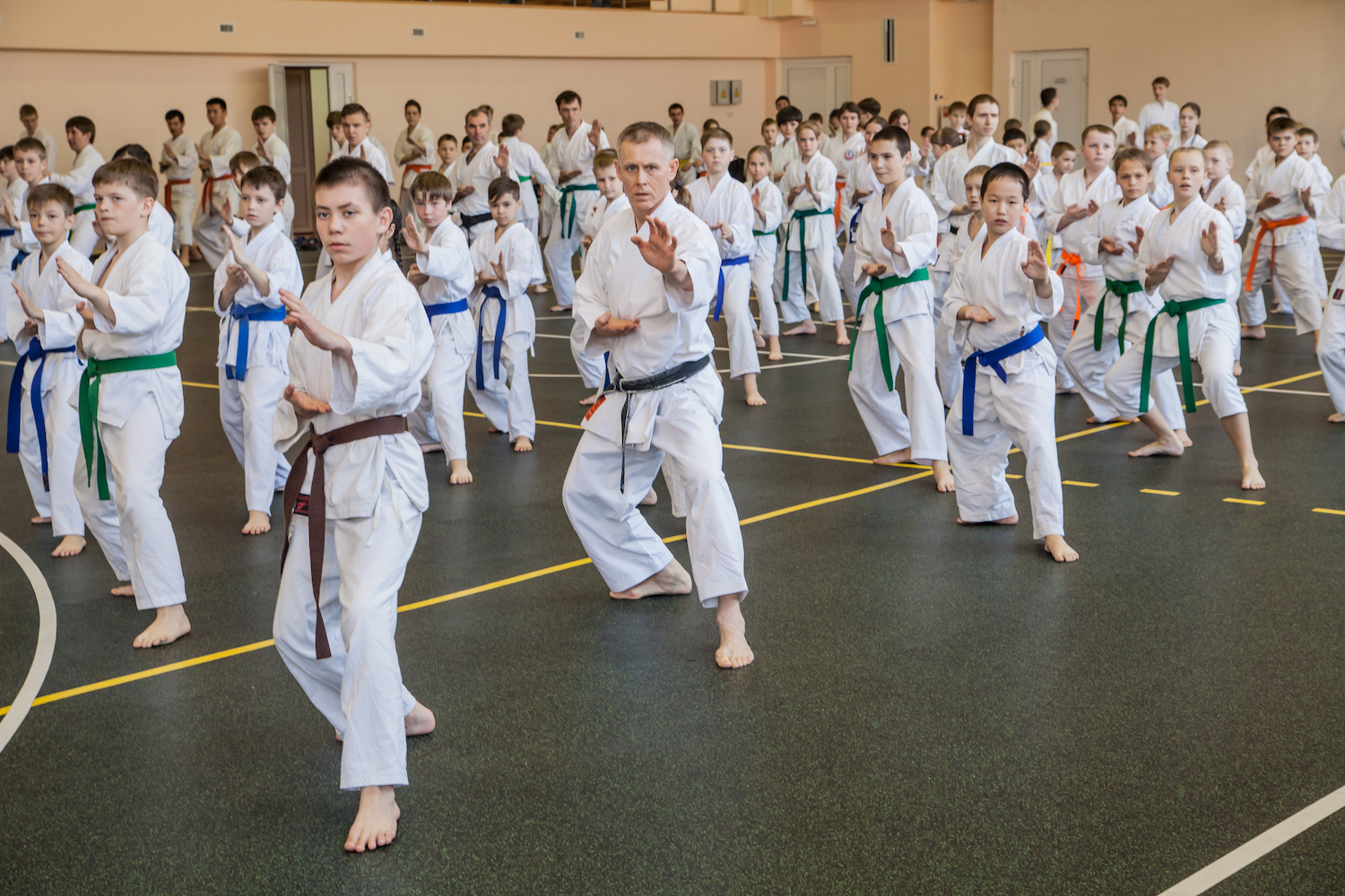 9 International Traditional Karate-do seminar
