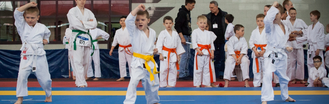 "INTERNATIONAL TRADITIONAL KARATE-DO TOURNAMENT ""KUMITE EVOLUTION"""