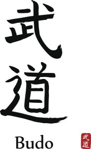 Hand drawn Hieroglyph translates BUDO-warrior way. vector japanese black martial art  symbols on white background. Ink brush calligraphy with red stamp